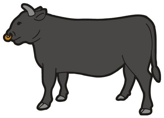 あなたは出来立てホヤホヤの牛のウンコを踏んだことがありますか?